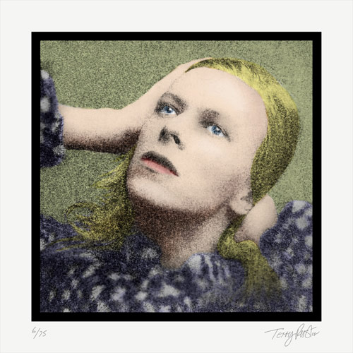 Terry Pastor - Hunky Dory - Giclee Print